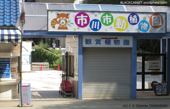 Chiba petting zoo