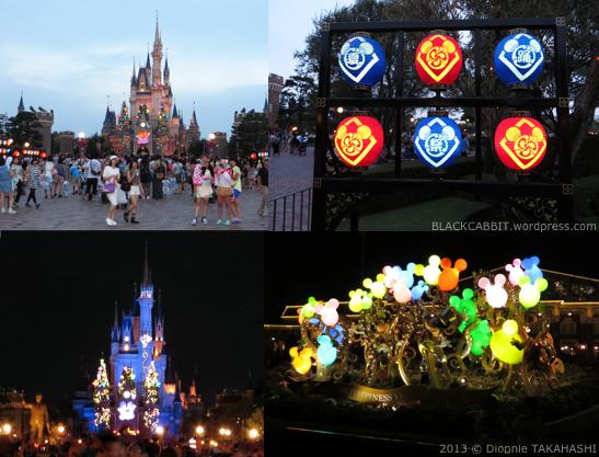 Disneyland Night