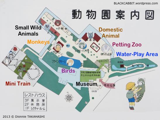 An Enjoyable Day at Ichikawa City Zoo Blackcabbits World