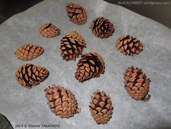 &toro; Compra PineCones, Compra Pine Cones, Encuentre Pine Cones para la venta