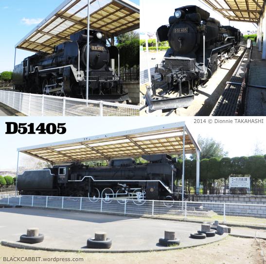 D51405