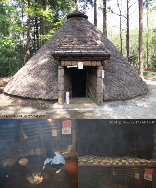 Pit Dwellings