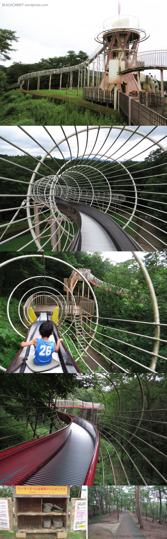 Roller Slides in Japan