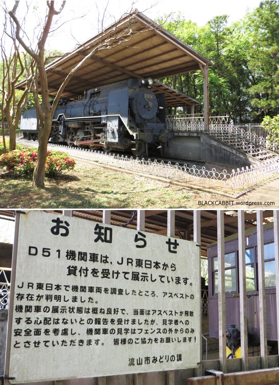 D51 Train
