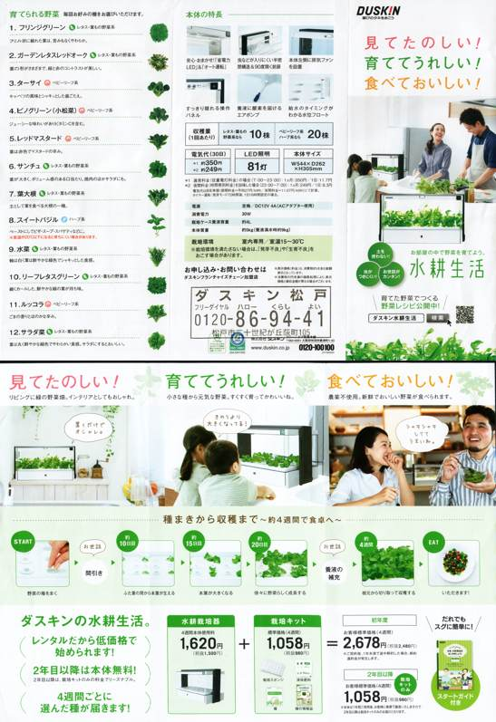 Japanese Hydroponic system